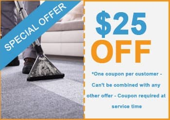 carpet Cleaning the woodlands offers